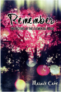 remember by marnie cate book cover